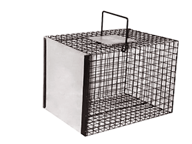 Carrying Cages