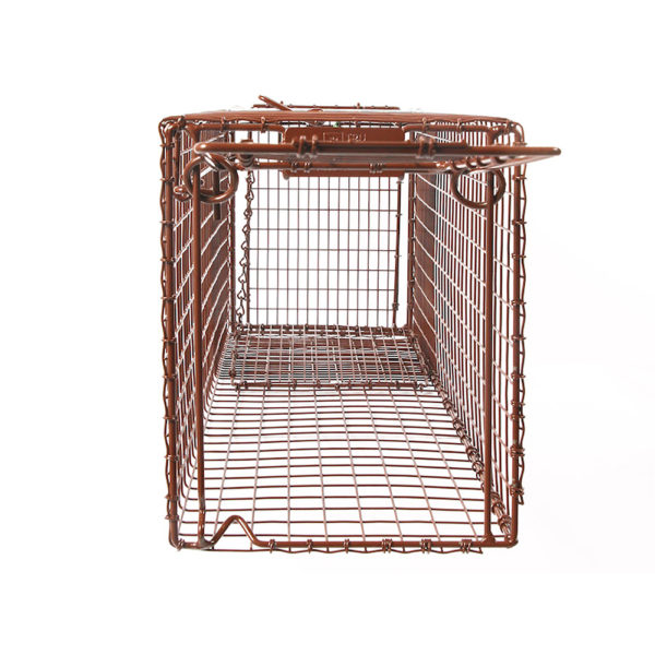 Tru-Catch Traps - 30D Wildcat Deluxe-Cat Trap - 1/4